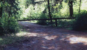 Log gate on Michaux Road to Main Camp Road